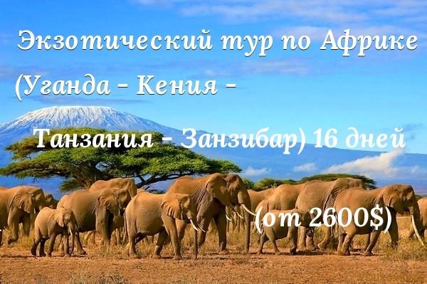 Новогодний экзотический тур по Африке (Уганда-Кения -Танзания-Занзибар)